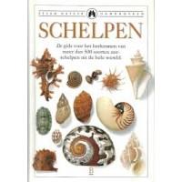 Dance S. Peter: Schelpen, de gids voor het herkennen van meer dan 500 soorten zeeschelpen uit de hele wereld