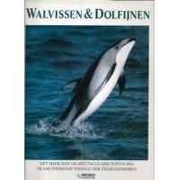 Cox, Vic: Walvissen en dolfijnen