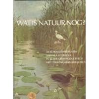 Hillenius, D: Wat is natuur nog? 24 schoolplaten van M.A. Koekkoek