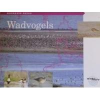 Noordzee-Reeks, EcoMare, Wadvogels, deel 5