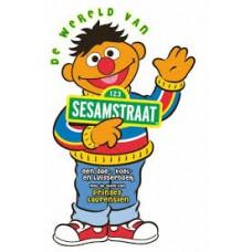 Doe-voel en luisterboek: De wereld van Sesamstraat (boek met cd met verhaaltjes voorgelezen door Prinses Laurentien)