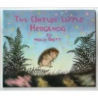 Brett, Molly: The untidy little hedgehog