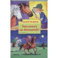 Boehme, Julia: Ponyclub in galop, twee pony's op dievenjacht