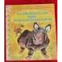 Gouden boekjes van de Bezige Bij: Cornelis de neushoorn (43)