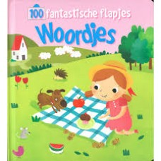 100 fantastische flapjes: Woordjes (karton)
