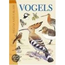 Hammond, Nicholas: Deltas natuurgids vogels