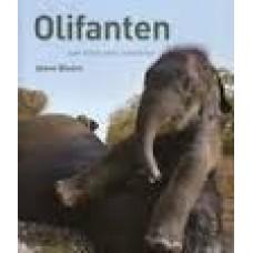 Bloom, Steve: Olifanten, een boek voor kinderen