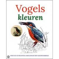 Kleurboek: Vogels kleuren, maar dan 40 prachtige afbeeldingen met kleurvoorbeeld
