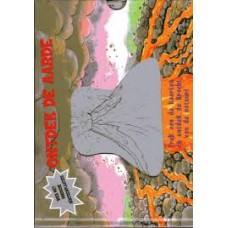 Harrison, James: Ontdek de aarde ( boek met magische rontgenplaatjes)