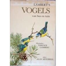 Mitchell, Allan en Terence Lambert: Lambert's vogels van bos en tuin