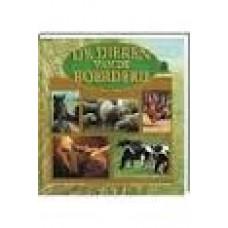 Masson-Deblaize, Isabelle met foto's van Yves Lanceau: De dieren van de boerderij, een informatief kijkboek voor kinderen
