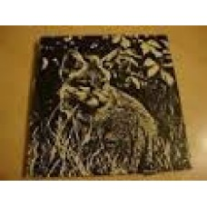 Stoeckicht, Louisa: Het verhaal van ... de kleine vos