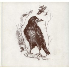 Bouma, Hans en Evelyne Dessens: Zolang er vogels zijn ( gedichten over vogels)