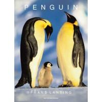Lanting, Frans: Penguin
