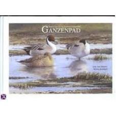 Ommen, Erik van en Wilma Brinkhof: Ganzenpad, impressies van het Lauwersmeergebied