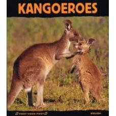 Poot voor Poot: Kangoeroes door Stephanie Ledu-Frattini