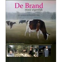 Loo, Joost van der/Arjen Roos/Rianne Willems: De Brand, mooi eigenlijk