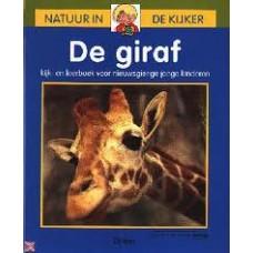 Natuur in de kijker: De giraf