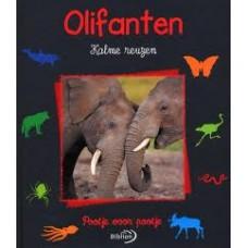 Pootje voor pootje: Olifanten kalme reuzen door Christine en Michel Denis-Huot