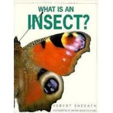 Snedden, Robert: Wat is een insekt?