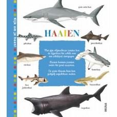 Kijk om je heen: Haaien