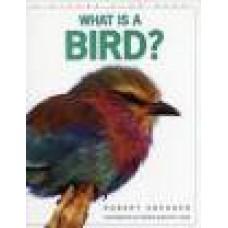 Snedden, Robert: Wat is een vogel?