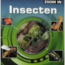 Zoom in: Insecten
