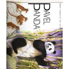 Remmerts de Vries, Daan: Pavel Panda