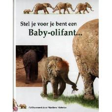 Head Honor en Nicholas Mathew: Stel je voor je bent een Baby-olifant