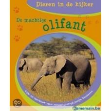 Dieren in de kijker: De machtige olifant