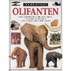 Ooggetuigen: Olifanten