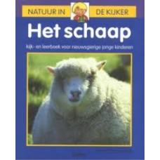 Natuur in de kijker: Het schaap