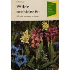 Thieme's zakboeken voor natuurvrienden: Kohlhaupt, P: Wilde orchideeen